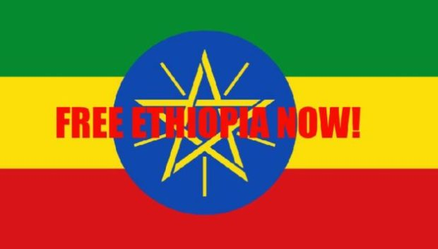 free-ethiopia