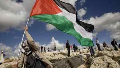 صورة فلسطين قضية ، وليست مجرد ترند عابر
