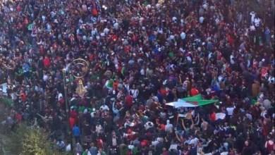 "Photo of تيارات معارضة تتهم ""رسالة بوتفليقة"" بمحاولة الالتفاف على إرادة الجزائريين"