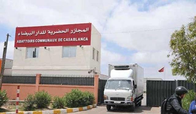 """للمرة الثالثة على التوالي.. مجازر الدار البيضاء تحظى بشهادة الجودة """"ISO 22000"""""""