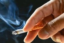 Photo of وزارة الصحة تطلق حملة وطنية للتحسيس بخطورة التدخين