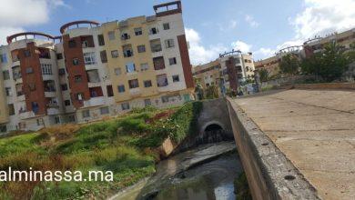 Photo of الائتلاف المغربي من أجل المناخ يقدم توصياته للجنة النموذج التنموي الجديد