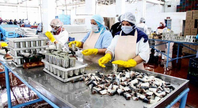 """مصنعو مصبرات الأسماك يحذرون من أزمة """"غير مسبوقة"""" تهدد القطاع"""