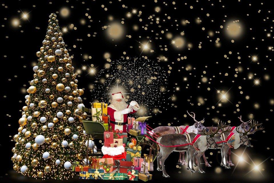 صور شجرة عيد الميلاد المجيد مع بابا نويل