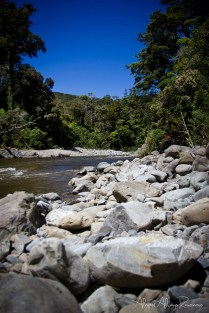 Hutt river tributary
