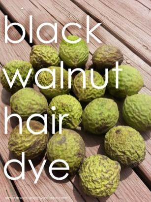 natural hair dye with black walnuts