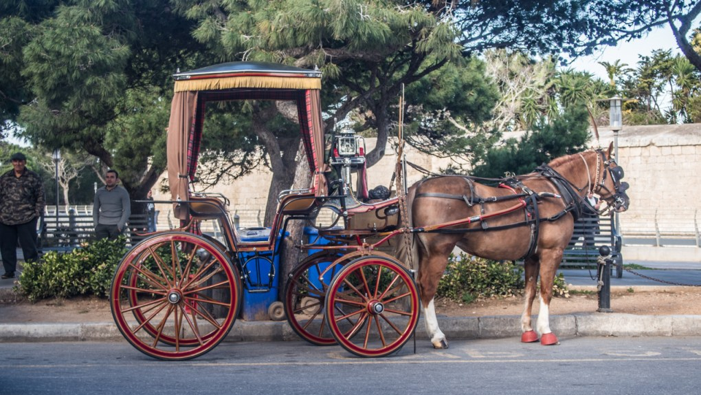Horse carriage outside Mdina in Malta