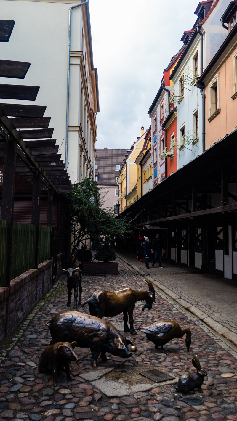 Stare Jatki, a small street in Wrocław, Poland, how to spend 48 Hours in Wrocław, Poland
