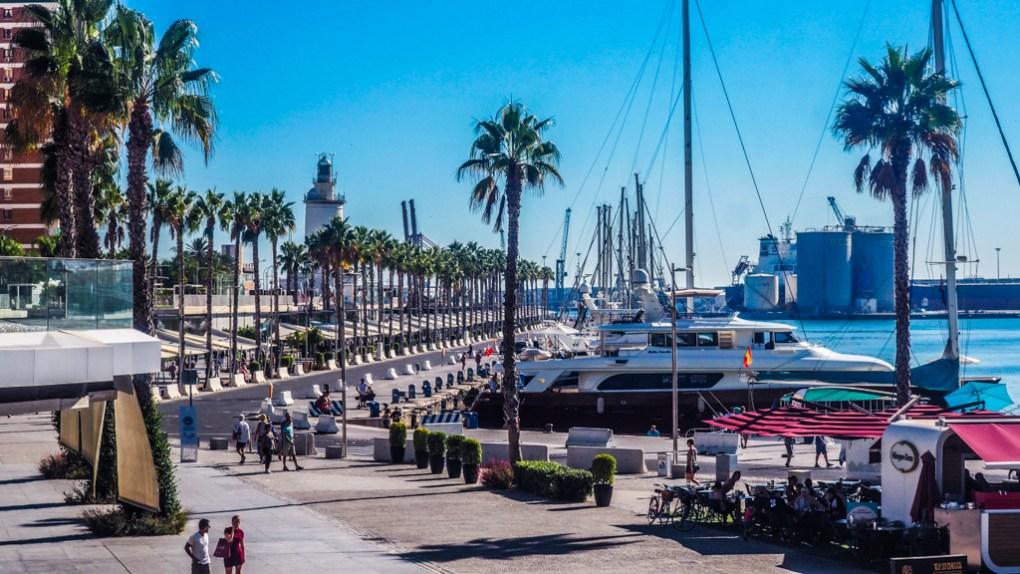 Pine trees, boats and benches lining the promenade of Port de Málaga, Spain