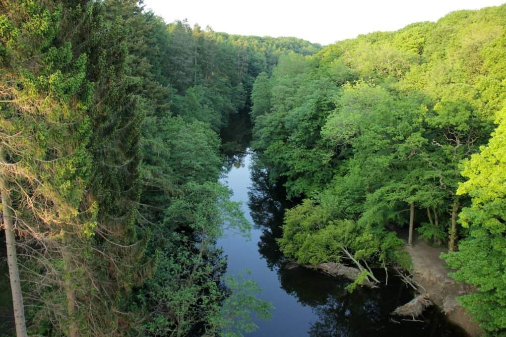 Nidd Gorge in Harrogate, North Yorkshire in England Paddington Filming Location