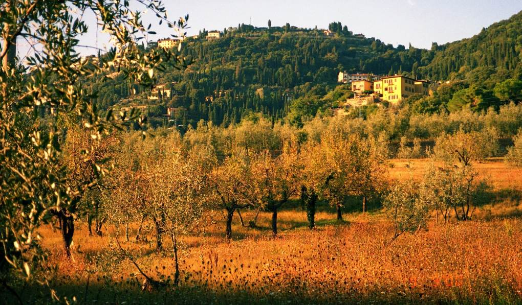 Fiesole in Florence, Italy as seen as A Room with a View film location