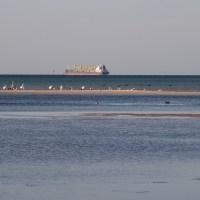 Crossing Port Phillip Bay