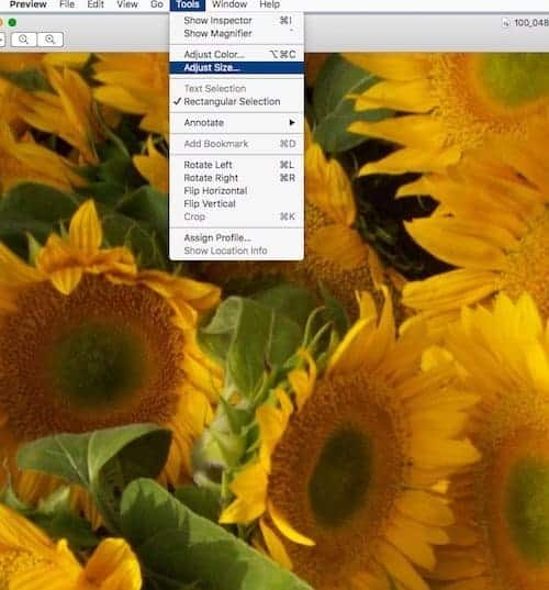 How to resize an image on a Mac - select tools.