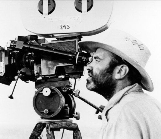 A Field Guide to Texan Cinema by Travis Ratcliff: Filmmaker, The Apiary. Terrence Malick: Days of Heaven
