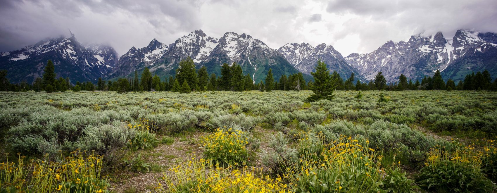 Grand Tetons photo by Jason Fitzpatrick