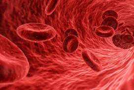OSHA & Bloodborne Pathogens