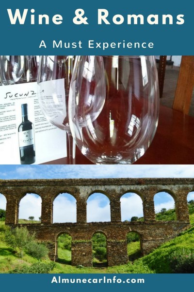 Spend the afternoon at a local bodega with wine tasting, olive oil tasting and tapas. Then finish it off with a walk to the historic Roman Aqueduct! Read more on AlmunecarInfo.com