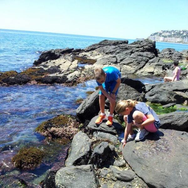 tide pooling at Curumbico Beach