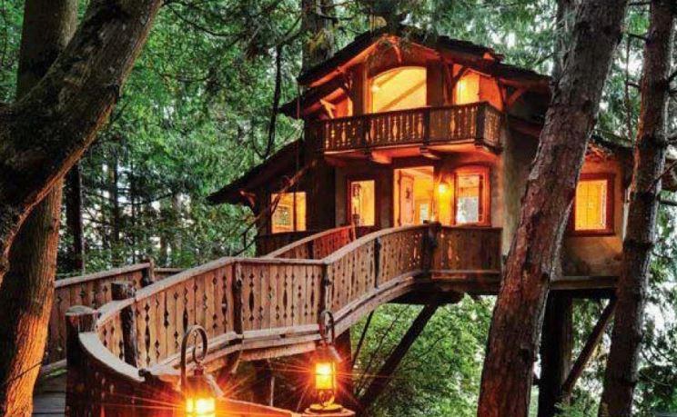 Alnwick Tree house Restauant at Night