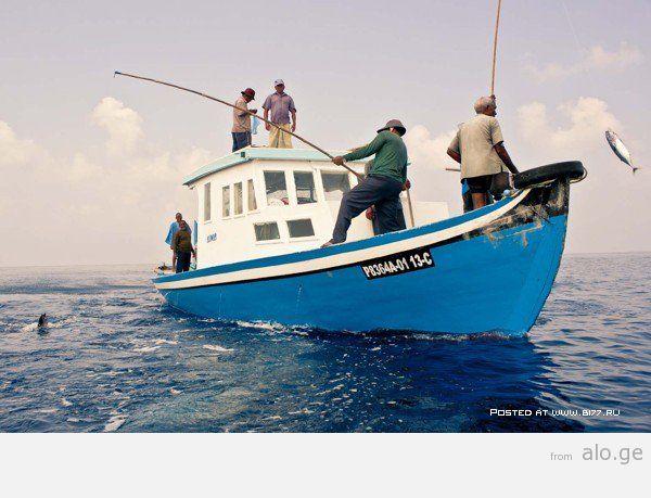 1365282180_maldives-2014-b177.ru-24