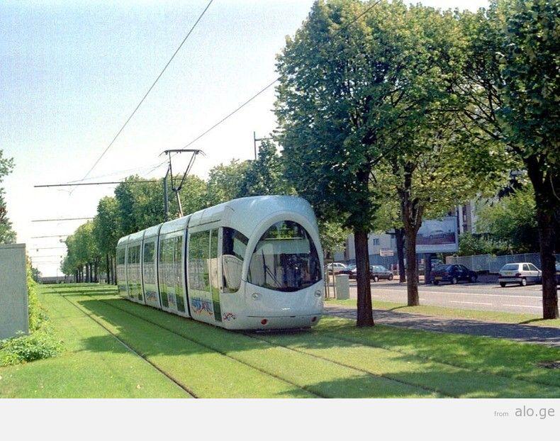 greentramway04