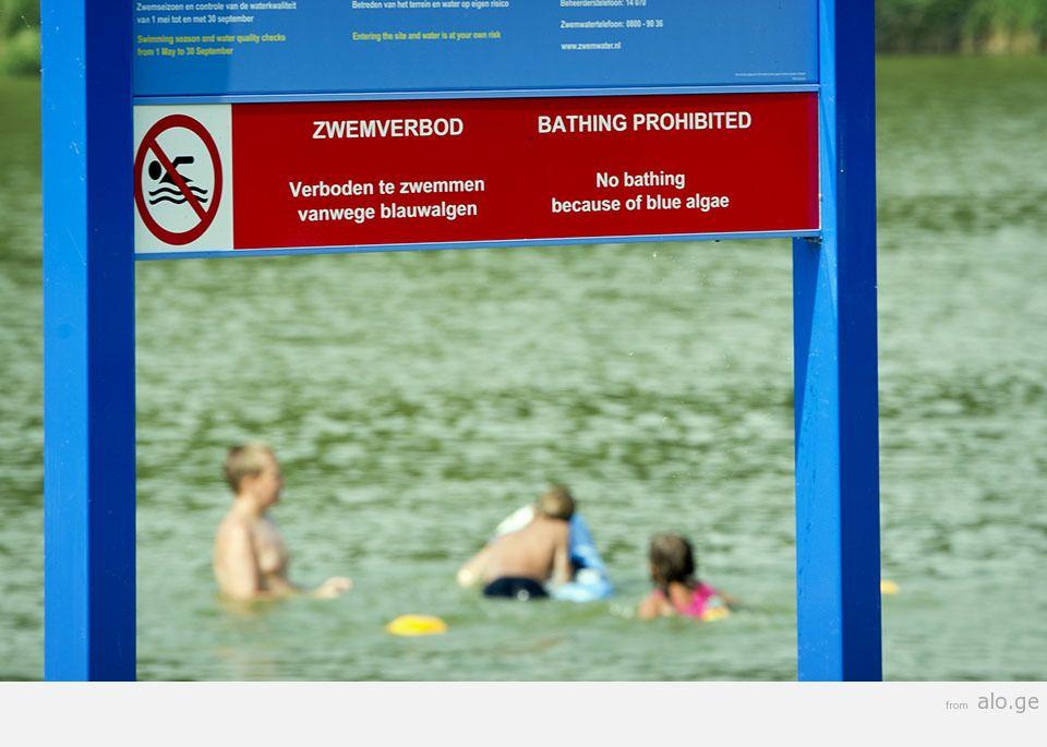 Blauwalg: verboden te zwemmen!
