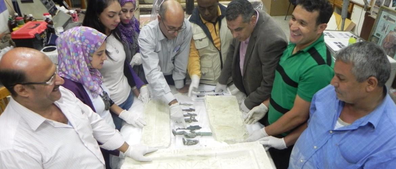 وزارة الأثار : استرداد 354 قطعة أثار  بعد ضبطها بمدينة الشارقة