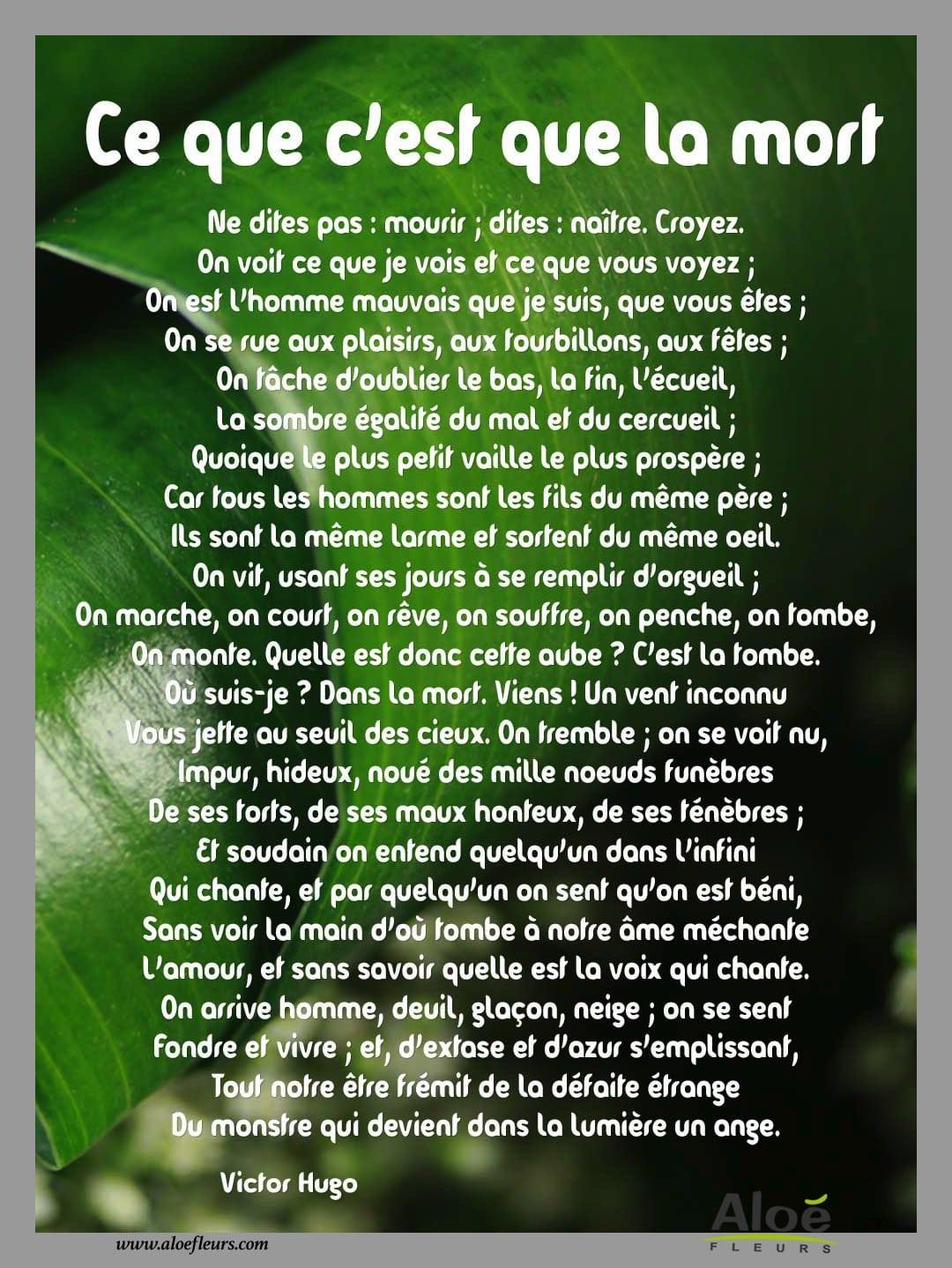 Citation Sur La Mort D Un Proche : citation, proche, Messages,, Citations,, Poèmes, Deuil, FLEURS