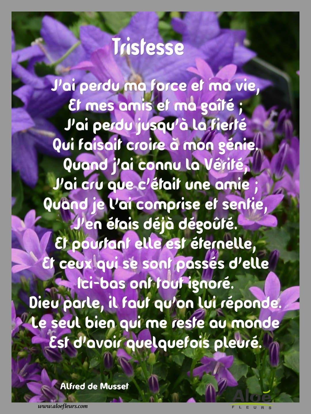 Poeme Pour Le Deces D Une Grand Mere : poeme, deces, grand, Messages,, Citations,, Poèmes, Deuil, FLEURS
