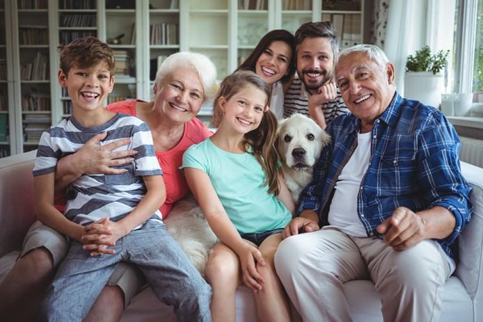 aloe vera famille
