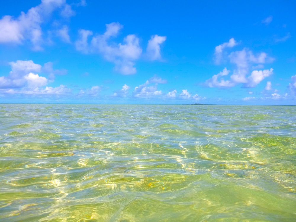 天気が晴れのハワイのサンドバー(オアフ島)
