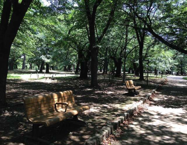 大宮公園(遊歩道)