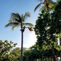 Hawaii Fun: Paradise Cove Luau | Aloha Lovely