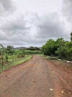 kauai-island-hawaii-farm
