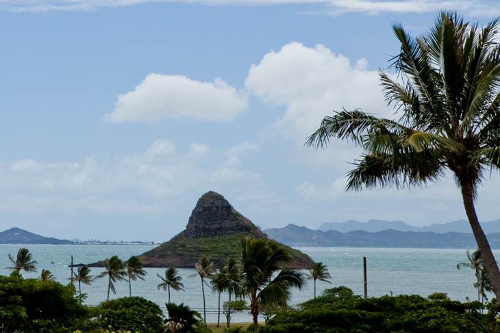 Chinaman's hat look so close!