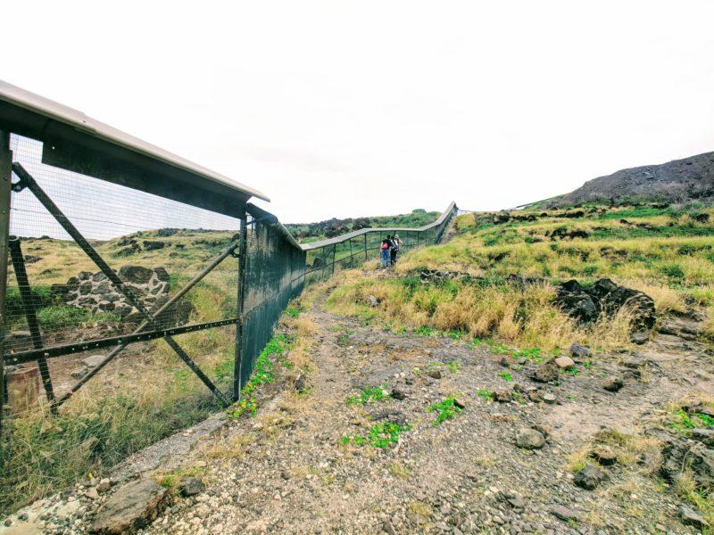Kaena Point hike