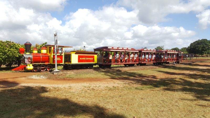 Riding the Pineapple Express at Dole Plantation is a fun, informative experience that is good for all ages.