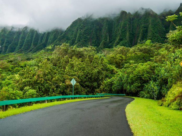 Hoomaluhia Botanical Garden drive-thru road.