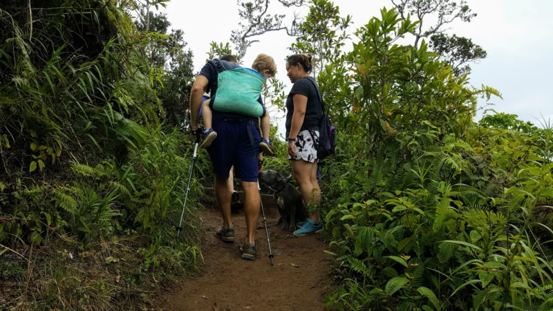 """Can you do what these """"power parents"""" did on Kuliouou ridge trail? I could barely manage bringing myself up this mountain - they brought an extra person!"""