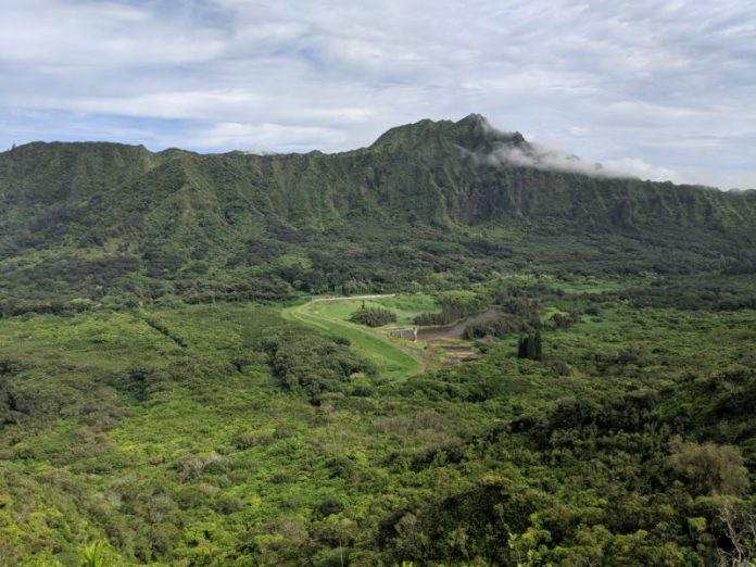 The view of Nuuanu Valley from Pauoa Flats Trail bench.