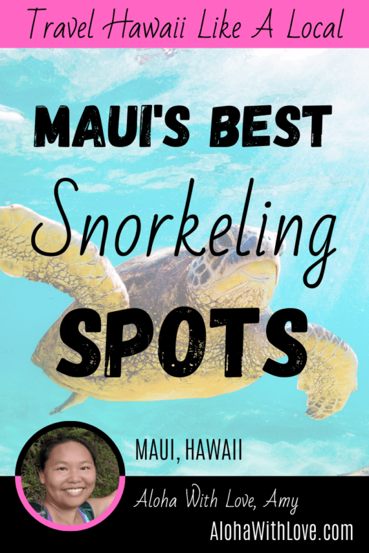 Pinterest Pin: A Guide To Snorkeling in Maui And The Best Snorkeling Spots