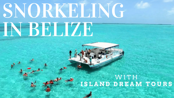 Snorkeling with Island Dream Tours in Belize