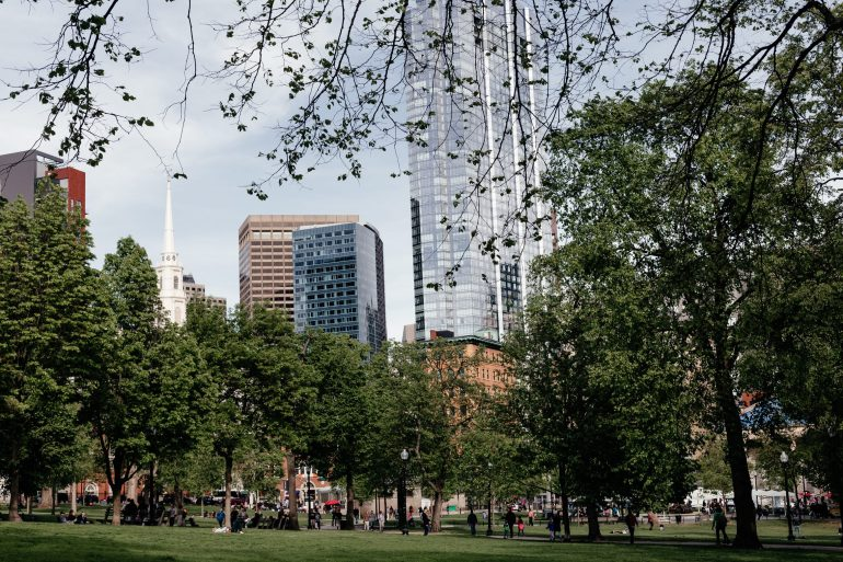 Boston park and skyline via A Lo Profile's Boston Travel Guide