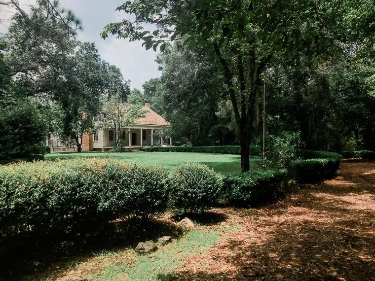 2nd birthday fun at Tallahassee museum old florida old plantation