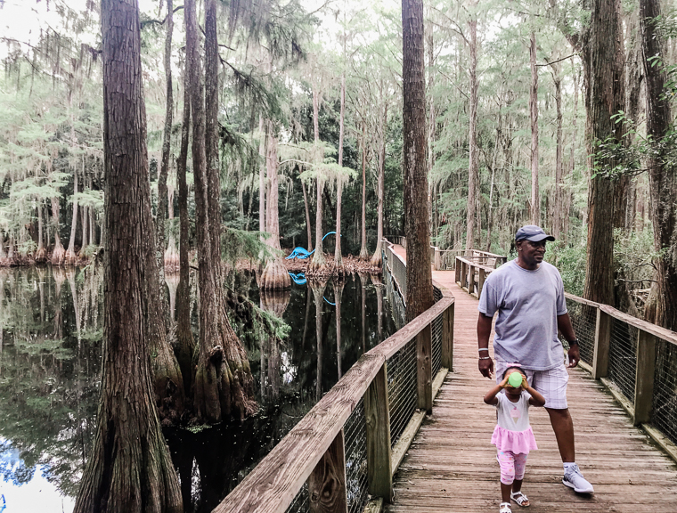2nd birthday fun at Tallahassee museum old florida nature trail
