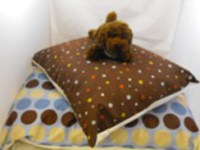 dog beds | A Taste of Life at Windrush Alpacas