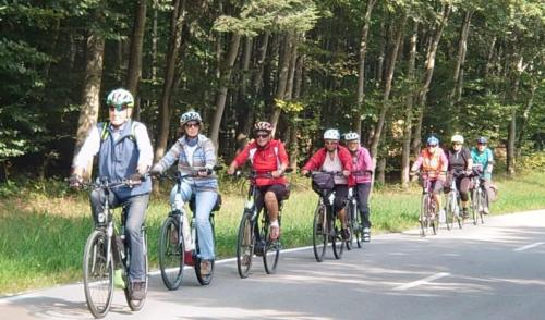 """Artikelbild zu Artikel """"Weitblickradtour"""" nach Schaitsee"""