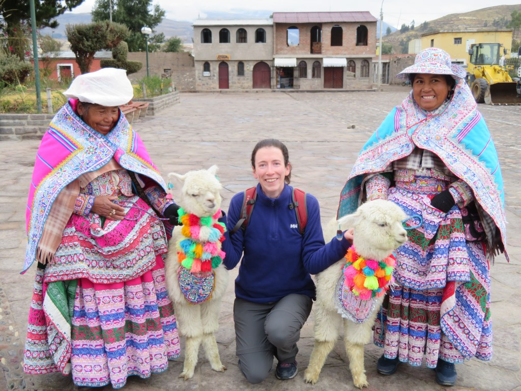 Visiting the Colca Canyon: Llamas and Alpacas