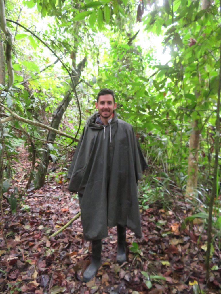 Amazon Rainforest | Waterproof