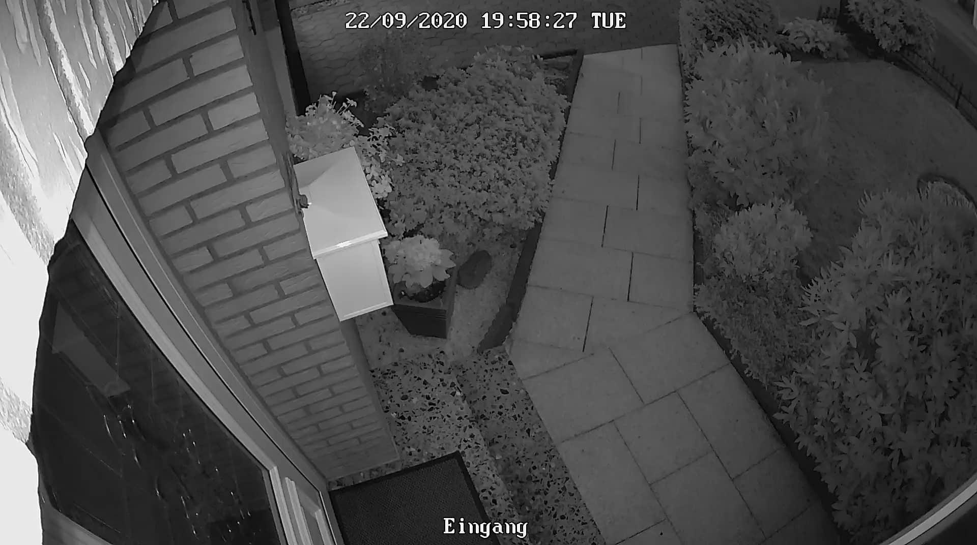 Video Überwachung des Eingangsbereichs bei Nacht
